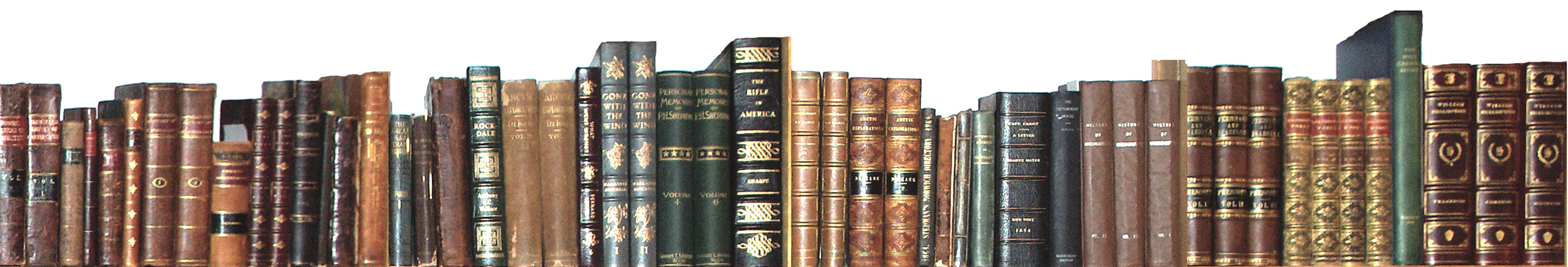 Shelf Of Antiquarian Books