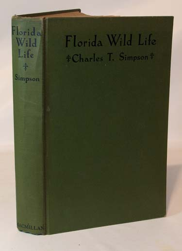 Florida Wild Life Observations On The