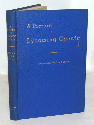 A Picture of Lycoming County